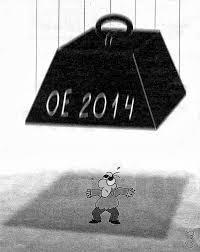 OE 2014 – Orçamento de Estado 2014 do Cidadão